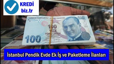 İstanbul Pendik Evde Ek İş ve Paketleme İlanları