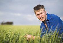 Online Sistem Üstünden Genç Çiftçi Kredi Projesi Başvurusu