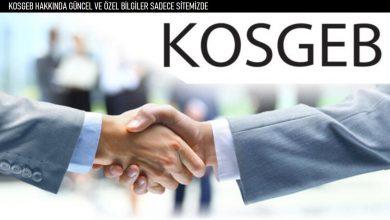 KOSGEB 50.000 TL Kredi Kampanyası Başladı.